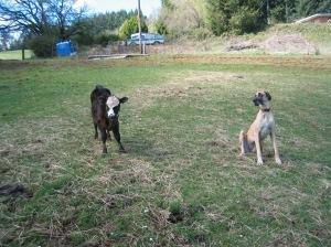 Annie and Tess Apr06