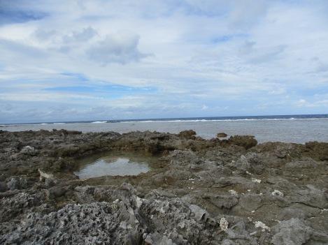 coral reeg wasteland